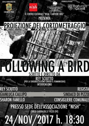 """FOLLOWING A BIRD"" ..contro il femminicidio"